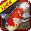 Koi Fish Live Wallpaper Free icon
