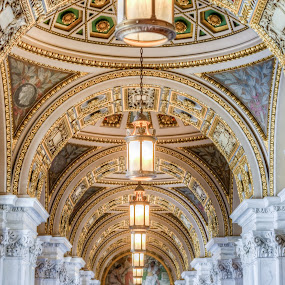 I Had A Dream by Dan Girard - Buildings & Architecture Public & Historical ( interior, historical, architecture, dangirardphotography, library of congress )