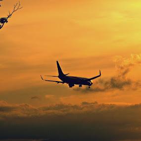 Landing at golden hour. by Awang Kassim - Transportation Airplanes ( plane, sunset, aircraft )