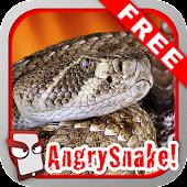 Angry Snake Free!