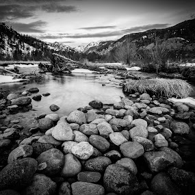 Moraine Park B&W by David Andrus - Black & White Landscapes ( estes park, colorado, big thompson river, rocky mountain national park, moraine park,  )