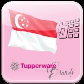 HJ Tupperware Singapore