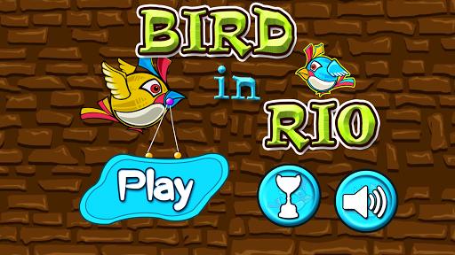 Bird In RIO