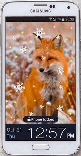 Winter Pet live wallpaper