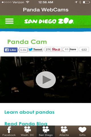Panda WebCams