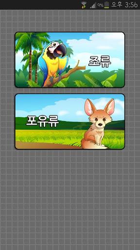 재밌는 교육 사전 – 동물원 실사 동영상 동물화보