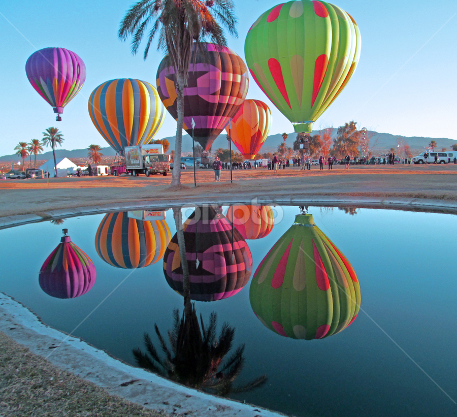 Sunrise Balloon Reflection by Tina Hailey - News & Events Entertainment ( reflections, tina's capture moments, lake havasu az, festival, hot air balloons, , Free, Freedom, Inspire, Inspiring, Inspirational, Emotion )