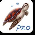 Dive Planner Pro icon
