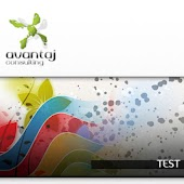 test web design avansat