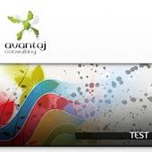 test web design avansat
