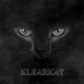 KlearKat Full CM11/12/DU Theme