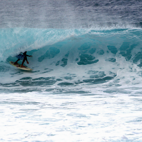 SURFING by Bill Waterman - Sports & Fitness Surfing ( water, surfing, tropical, ocean, hawaii,  )