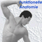 Physiokomp. Funkt.. Anatomie