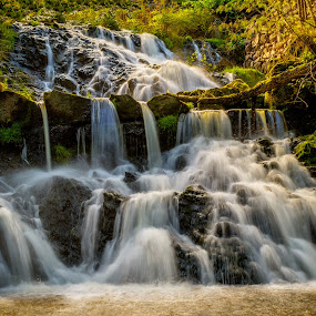 Waterfall by Colin Harley - Landscapes Waterscapes ( water, green, d5200, waterfall, falls, nikkor, nikon, river )
