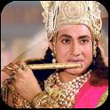 Video of Shri Krishna icon