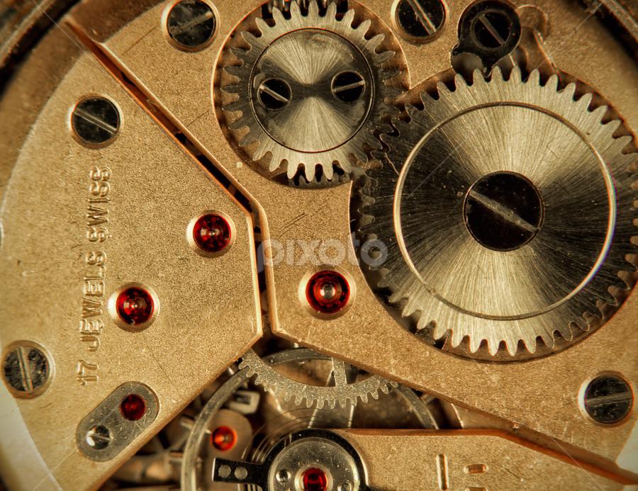 17 Jewels Swiss by Anton Donev - Artistic Objects Jewelry ( detail, machinery, wheel, clock, watch, pinion, mechanism, bizarre, exquisite, tin, gears, ratchet, swiss, time, macro, gear, cog, device, mechanical, jewels, closeup, object )