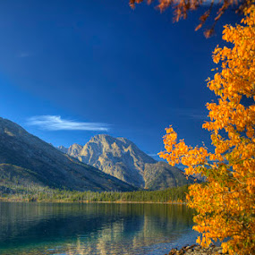 Mt. Moran Fall by Tom Reiman - Landscapes Mountains & Hills ( mountain, colorful, wyoming, fall, lake, teton, , color, colors, landscape, portrait, object, filter forge, nature )