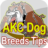 AKC Dog Breeds Tips