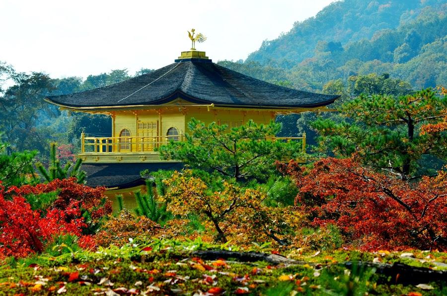 金閣寺 日本 by Ratib Bahrudin - City,  Street & Park  City Parks