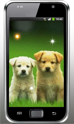 Puppy Joke Top Live Wallpaper
