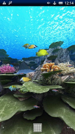 The coral reef vol.01 - Google Play Android 應用程式
