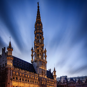 Brussels Town Hall by Florin Ihora - Buildings & Architecture Public & Historical ( hall, bruxelles, belgium, town, brussels, city at night, street at night, park at night, nightlife, night life, nighttime in the city,  )