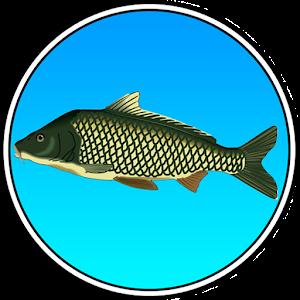 Реальная Рыбалка 模擬 App Store-愛順發玩APP