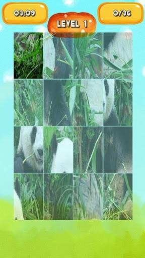 【免費解謎App】Panda Jigsaw Puzzles-APP點子