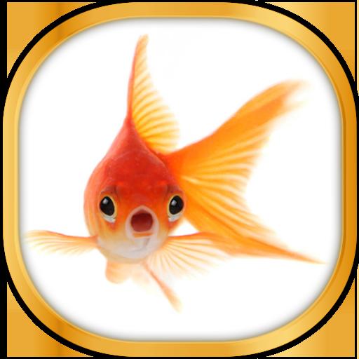 个人化の金魚ライブ壁紙 LOGO-記事Game