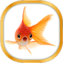 Gold Fish Live Wallpaper