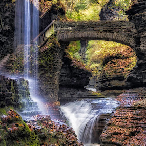 Life's Path  by Karen Celella - Landscapes Mountains & Hills ( water, mountain, waterfalls, autumn, colors, fall, ithaca, landscape, leaves, ny, color, colorful, nature )