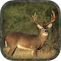 Whitetail Hunting Calls icon
