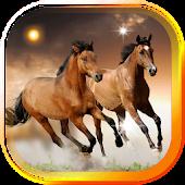 Horses Free HD live wallpaper