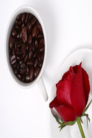 Coffee Wallpapers HD- screenshot