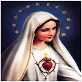 Fátima Virgen