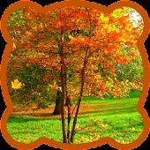 Jigsaw puzzle. Autumn