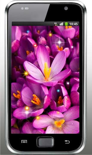 Flowers Love HD live wallpaper