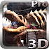 Ancient Brotherhood 3D lwp v1.1
