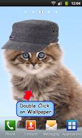 Screenshot of Talking Cat. Dances and Purrs.