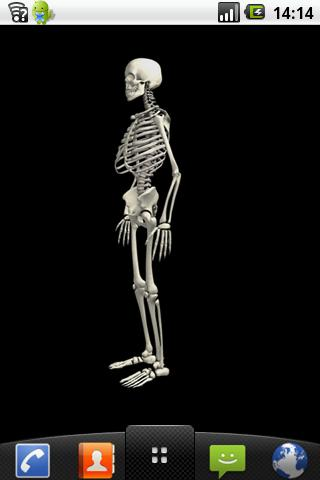 Funny dancing skeletonLWP FREE - screenshot