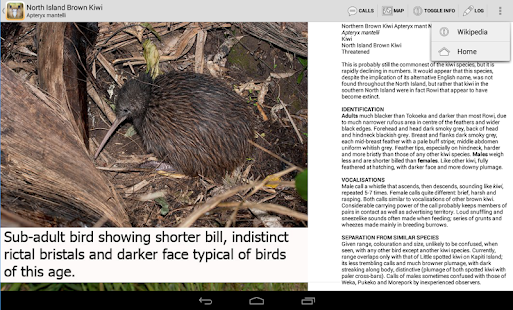Birds of New Zealand- screenshot thumbnail