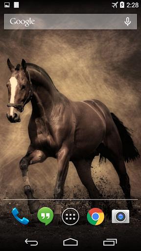 Horse Live Wallpaper FREE