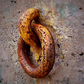 RING ON WALL by Bill      (THECREOS) Davis - Artistic Objects Antiques ( ring, old, rust, wall,  )