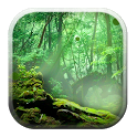 Forest 3D Background icon