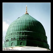 Gardens of Sunnah