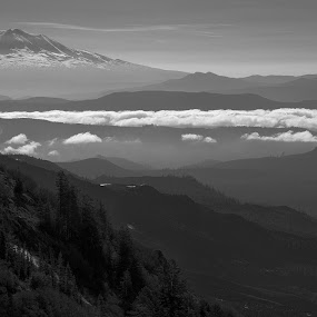 Mt. Adams from the side of Mt. St. Helens. by Michael White - Landscapes Mountains & Hills