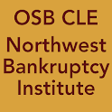 2013 NW Bankruptcy Institute logo