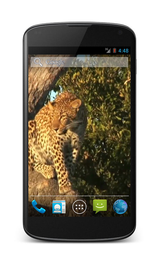 Leopard Free Video Wallpaper- screenshot