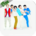 One Direction Theme icon