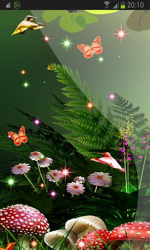 Summer Garden Bird Flower HD